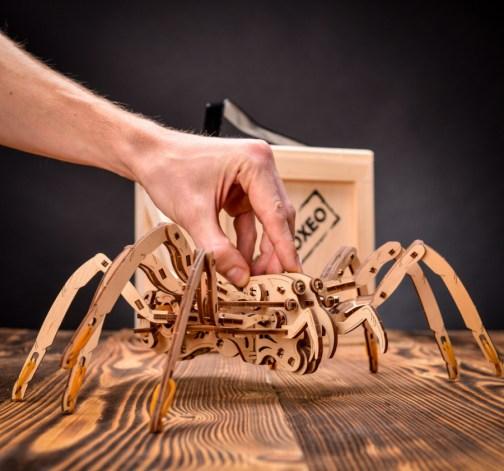 Bedna Spider