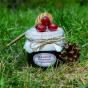 Medová pochoutka s brusinkami a borovičkou
