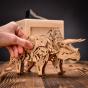 Bedna Triceratops