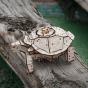 3D model želvy
